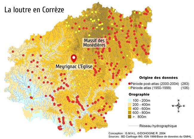 La loutre en Corrèze